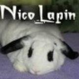 Nicolapin
