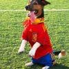 Footballrisingstar
