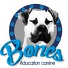 Bones Education Canine