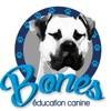 Bones Education Canine