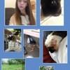 Chloe_les_animaux