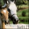 Isa012