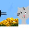 Y Love Cats