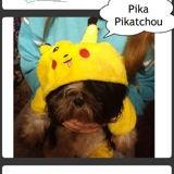 Pika Pikatchou