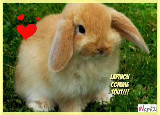 Lapinou!!!, lolcats réalisé sur Wamiz