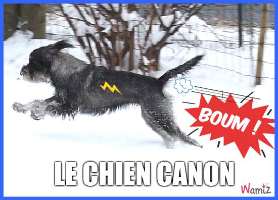 mag2 qui part au ski plus vite que son ombre !, lolcats réalisé sur Wamiz