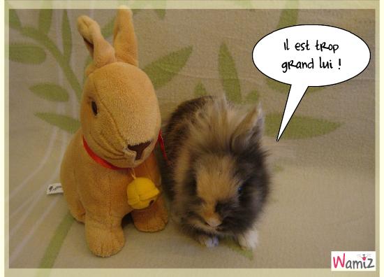 Tink et le lapin Lindt, lolcats réalisé sur Wamiz