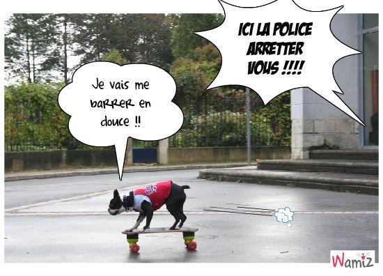 LA POLICE !!!, lolcats réalisé sur Wamiz