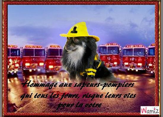 ti-loup le pompier, lolcats réalisé sur Wamiz