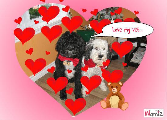 love my vet, lolcats réalisé sur Wamiz