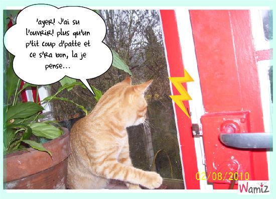 PitPit tente d'ouvrir la porte, lolcats réalisé sur Wamiz