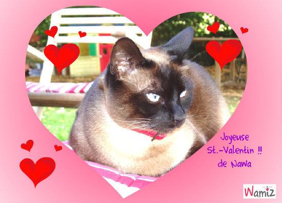 Joyeuse St.-Valentin, lolcats réalisé sur Wamiz
