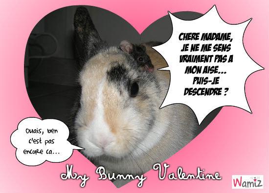My Bunny Valentine, lolcats réalisé sur Wamiz