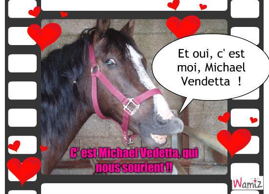 Michael Vendetta !!, lolcats réalisé sur Wamiz