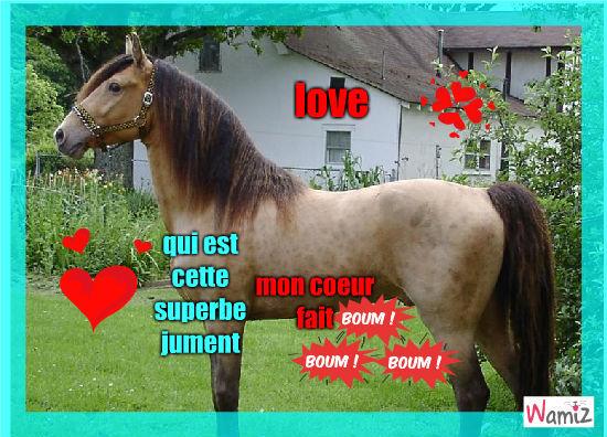 cheval, lolcats réalisé sur Wamiz