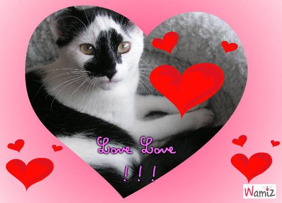 Love Litchy , lolcats réalisé sur Wamiz