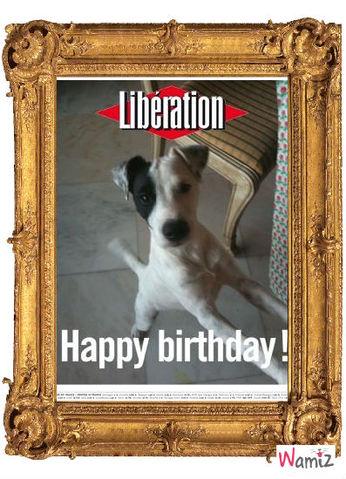 Happy Birthday, lolcats réalisé sur Wamiz