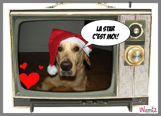 Christmas dog, lolcats réalisé sur Wamiz