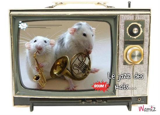 Le jazz des rats, lolcats réalisé sur Wamiz
