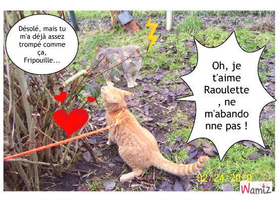 Raoulette et Fripouille !, lolcats réalisé sur Wamiz