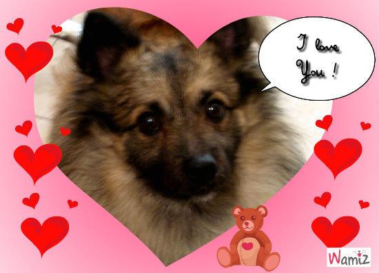 I  LOVE YOU!, lolcats réalisé sur Wamiz