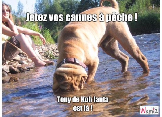 Tony de Koh Lanta, lolcats réalisé sur Wamiz