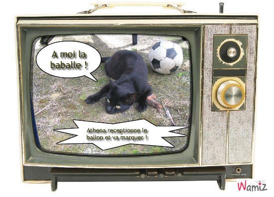 Athéna joue au foot !, lolcats réalisé sur Wamiz
