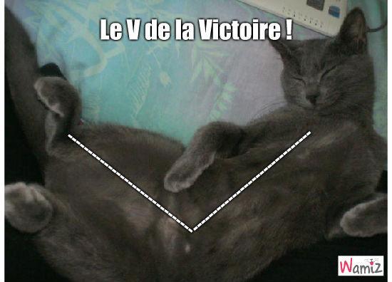 Le V de la Victoire, lolcats réalisé sur Wamiz
