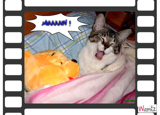 Mika se réveille, lolcats réalisé sur Wamiz