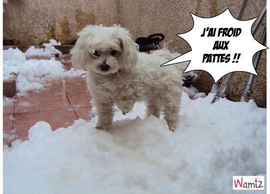 Tina dans la neige, lolcats réalisé sur Wamiz