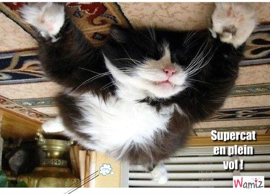 Supercat !, lolcats réalisé sur Wamiz