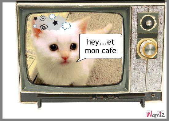 et le cafe du chat ?, lolcats réalisé sur Wamiz