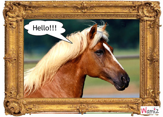 Hello!!!, lolcats réalisé sur Wamiz