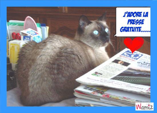 Le journal.....c'est super !, lolcats réalisé sur Wamiz