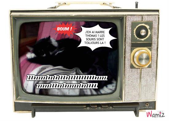 Tom et Jerry, lolcats réalisé sur Wamiz