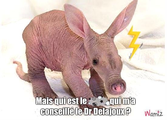 Dr Delajoux, lolcats réalisé sur Wamiz