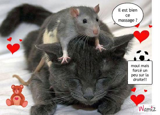 bon massage n'est ce pas?bon massage n'est ce pas?, lolcats réalisé sur Wamiz