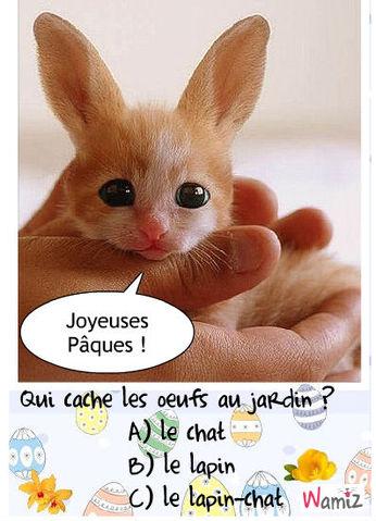 lapin-chat de Pâques, lolcats réalisé sur Wamiz