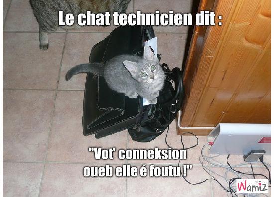 Chat technicien, lolcats réalisé sur Wamiz