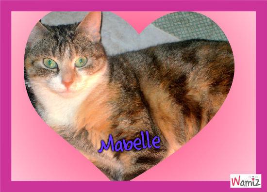 Mabelle, lolcats réalisé sur Wamiz