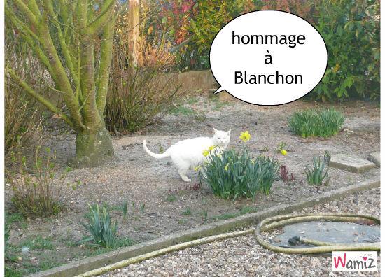 Blanchon est parti au ciel, lolcats réalisé sur Wamiz