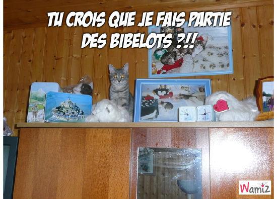 Meuble à chats, lolcats réalisé sur Wamiz