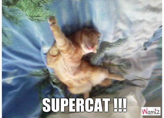 Supercat, lolcats réalisé sur Wamiz