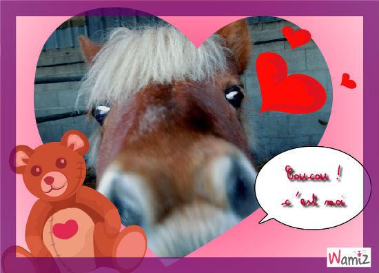 poney, lolcats réalisé sur Wamiz