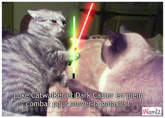 Sauvez la galaxie !, lolcats réalisé sur Wamiz