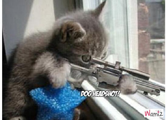 Dog Headshot!, lolcats réalisé sur Wamiz