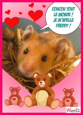 Mon hamster freddy, lolcats réalisé sur Wamiz