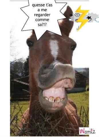cheval en colere, lolcats réalisé sur Wamiz