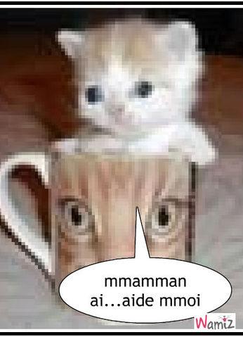 la tasse et al chatla tasse et le chat, lolcats réalisé sur Wamiz