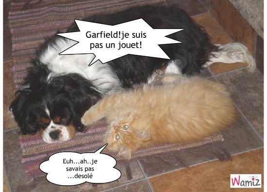 garfield !, lolcats réalisé sur Wamiz